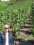 Steep vineyard in Wehlen near SA Pruem Winery